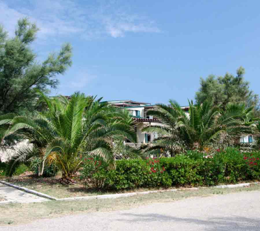 isola-la-chianca-unterkunft-casamobile-palmen